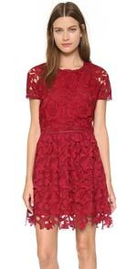Adorable FASHION Designer Dresses (5/6)