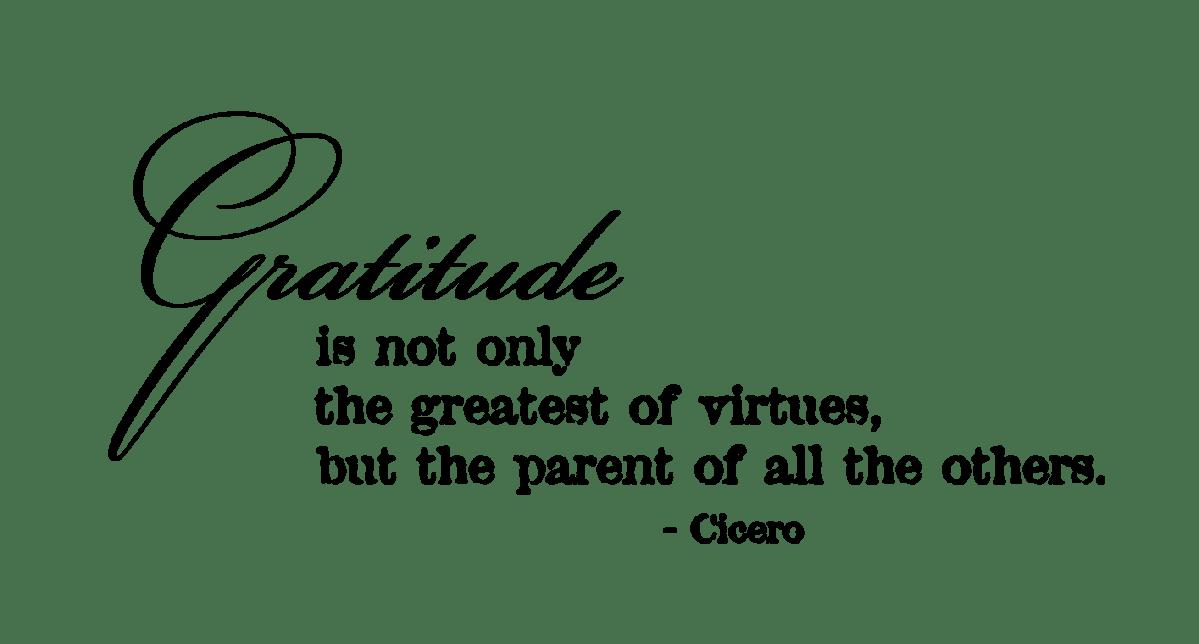 Gratitude-cicero