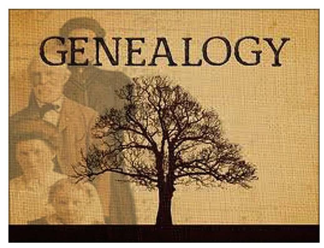 Genealogy_pic