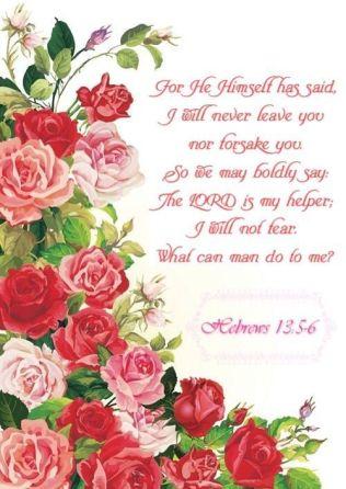 hebrews 13-5-6