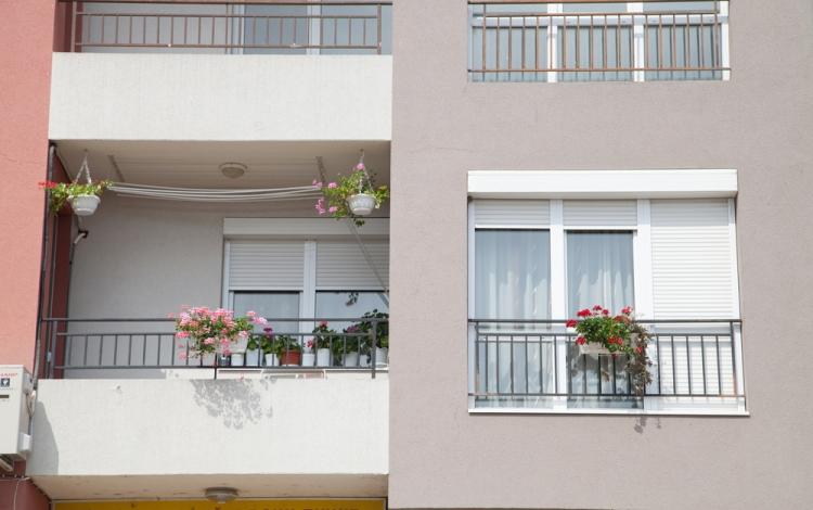 Window Roller Shutters.jpg